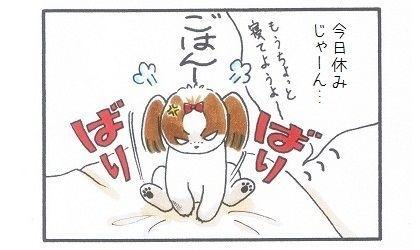 目覚まし犬-4