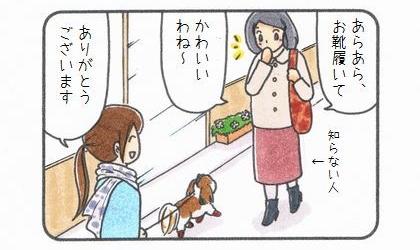 犬の散歩中。あらあら、お靴履いてかわいいわね~、と知らない人に言われた。ありがとうございます