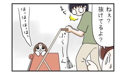 犬がカートの中で動いた結果、ハーネスから抜けていた。まるで縄抜けのよう