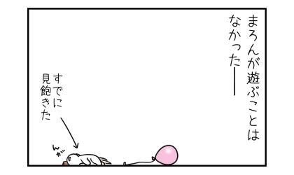 犬が風船で遊ぶことはなかった─。床で寝る犬(すでに風船を見飽きた)