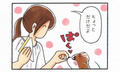 犬に卵サンドをひと口あげる。ちょっとだけだよ
