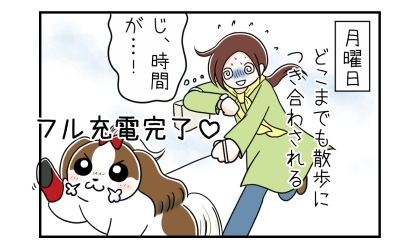月曜日、たくさん寝てフル充電完了の犬。散歩にどこまでも付き合わされる。時間が…!