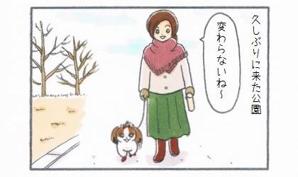 犬の散歩で久しぶりに来た公園。変わらないね~