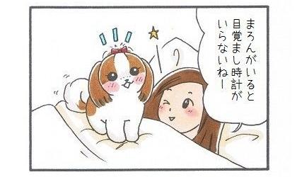 目覚まし犬-2