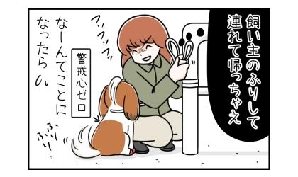 飼い主のふりして犬を連れてっちゃえ。なんてことになったら。警戒心ゼロの誰にでもしっぽを振る犬