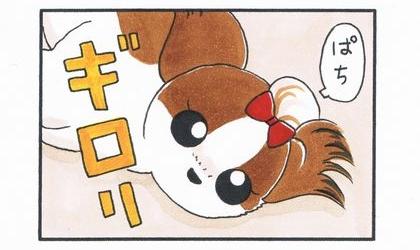 ママっ子 5-3
