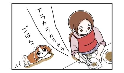 犬のご飯の準備。ドライフードをお皿に盛るカラカラという音を聞きつけて犬がやってきた
