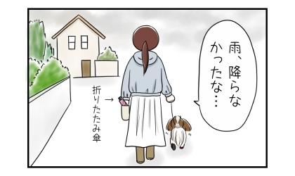 雨、降らなかったな…。犬の散歩から帰ってくる。折り畳み傘を持って行ったが使わなかった