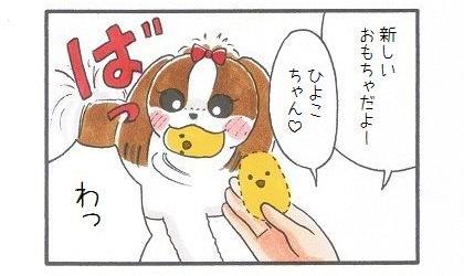 ひよことお散歩-1