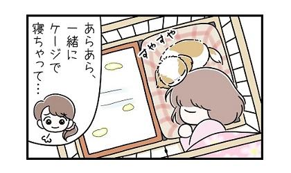 夜鳴きe 4コマ犬漫画 ぷりんちゃんねる