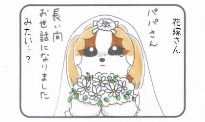 まろんの嫁入り-3