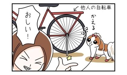 他人の自転車の前で立ち止まり(うちの自転車だと勘違い)、帰ると言う犬、おしい!