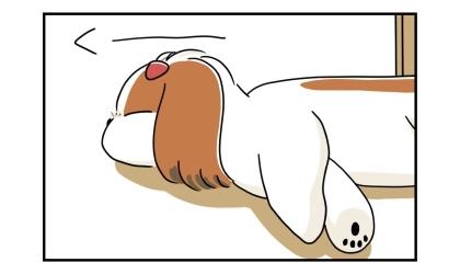 リビングの床で寝る犬の上半身