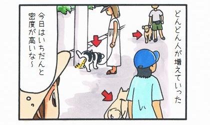 愛犬家たちの早朝散歩-3