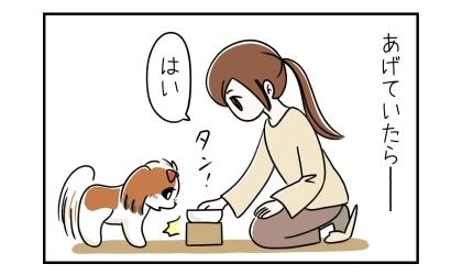 犬にさっさとご飯をあげていたら─。ご飯をもらってうれしそうな犬