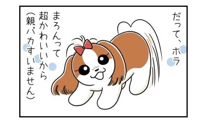 だって、ホラ、うちの犬って超かわいいから(親バカすいません)