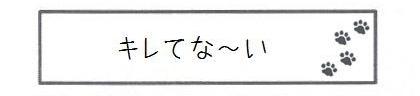 キレてな~い-0