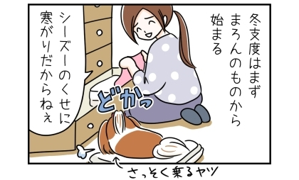 冬支度はまず犬のものから始まる。シーズーのくせに寒がりだからねぇ。出した毛布の上にさっそく乗る犬