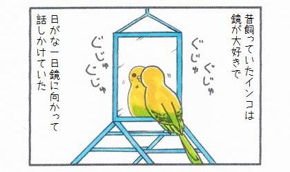 昔飼っていたインコは鏡が大好きで、日がな一日鏡に向かって話しかけていた