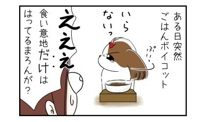 ある日突然、犬がご飯ボイコット。いらないっ。食い意地だけははってる犬が?
