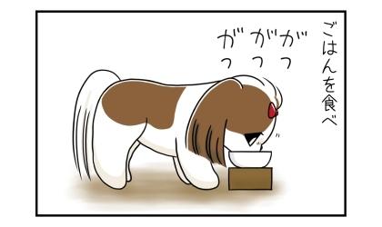 ご飯を食べ。犬ががつがつと食べる
