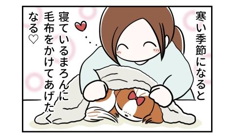 寒い季節になると、寝ている犬に毛布をかけてあげたくなる