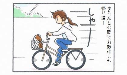犬と公園でお散歩した帰り道。自転車の前かごに犬を乗せて走っていた