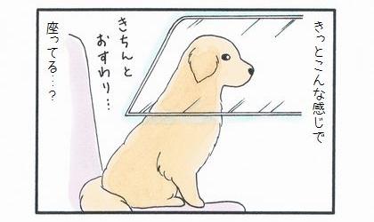 社長席に乗った犬-3