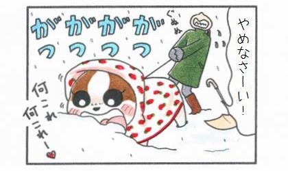 雪はおいし♪-4