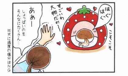 天から里芋の煮っ転がし-4