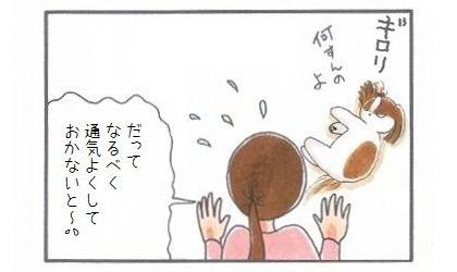 外耳炎のお話☆通気よく-4