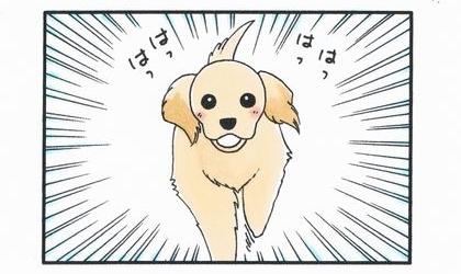 大型犬の威力-2