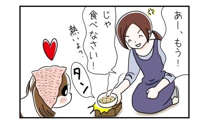 ご飯が待てない犬のおねだりに、あー、もう!じゃ食べなさい!熱いよ?