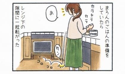 犬のご飯の準備をしていたら、レンジ下の隙間にドッグフードが一粒転がった