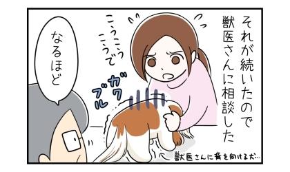 それが続いたので獣医さんに相談した。獣医さんに背を向ける犬。なるほど、と獣医さん