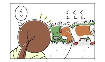 犬が草むらで何かの臭いを嗅いでいるのに気づく飼い主