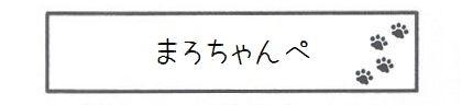 まろちゃんぺ-0