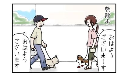 犬の朝散歩、いつものおじさんと出会う。おはようございます