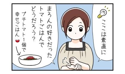 ここは素直に、犬の好きだったトマトご飯(ドライフードにプチトマト1個をトッピングで幸せご飯)でどうだろう?
