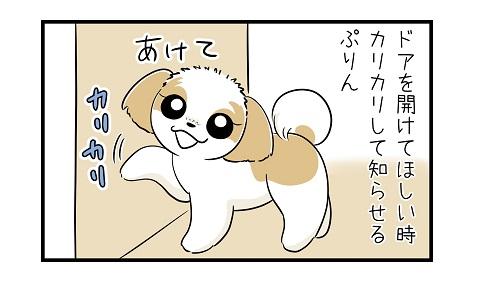 ここ開けてe 4コマ犬漫画 ぷりんちゃんねる