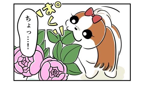 突然バラの葉を食べた犬