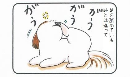 手を舐める犬-2