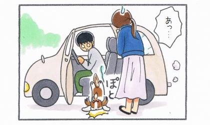 助手席のドアを開けたら寄りかかっていた犬が落ちた。あっ…