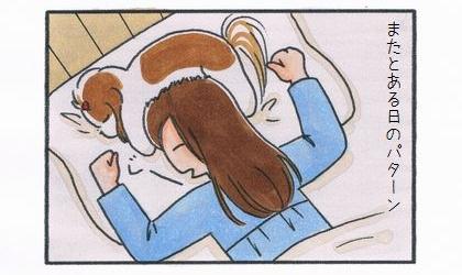 またとある日のパターン。犬が頭の上で寝ている