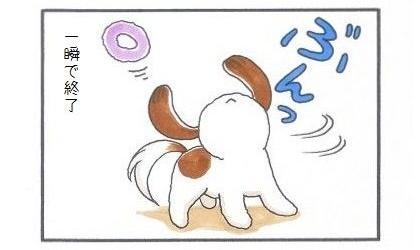 垂れ耳犬の対策-2