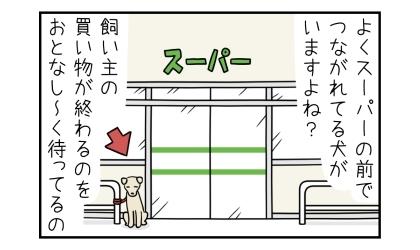 よくスーパーの前でつながれてる犬がいますよね?飼い主の買い物が言わるのをおとなしく待ってるの