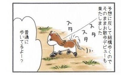 犬靴に挑戦!!!-4