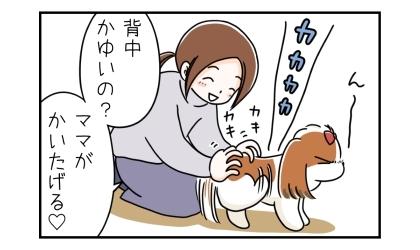 背中を後ろ足で掻く犬。背中かゆいの?ママがかいたげる。犬の背中を手でかいてあげる飼い主
