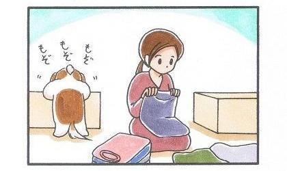 衣替え-1