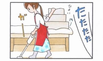 犬用階段凸激突編-2
